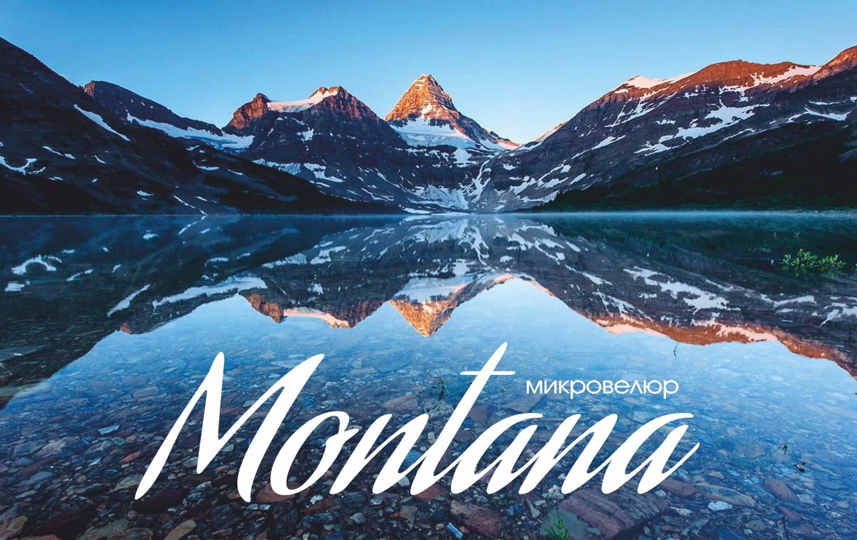 Montana   Top