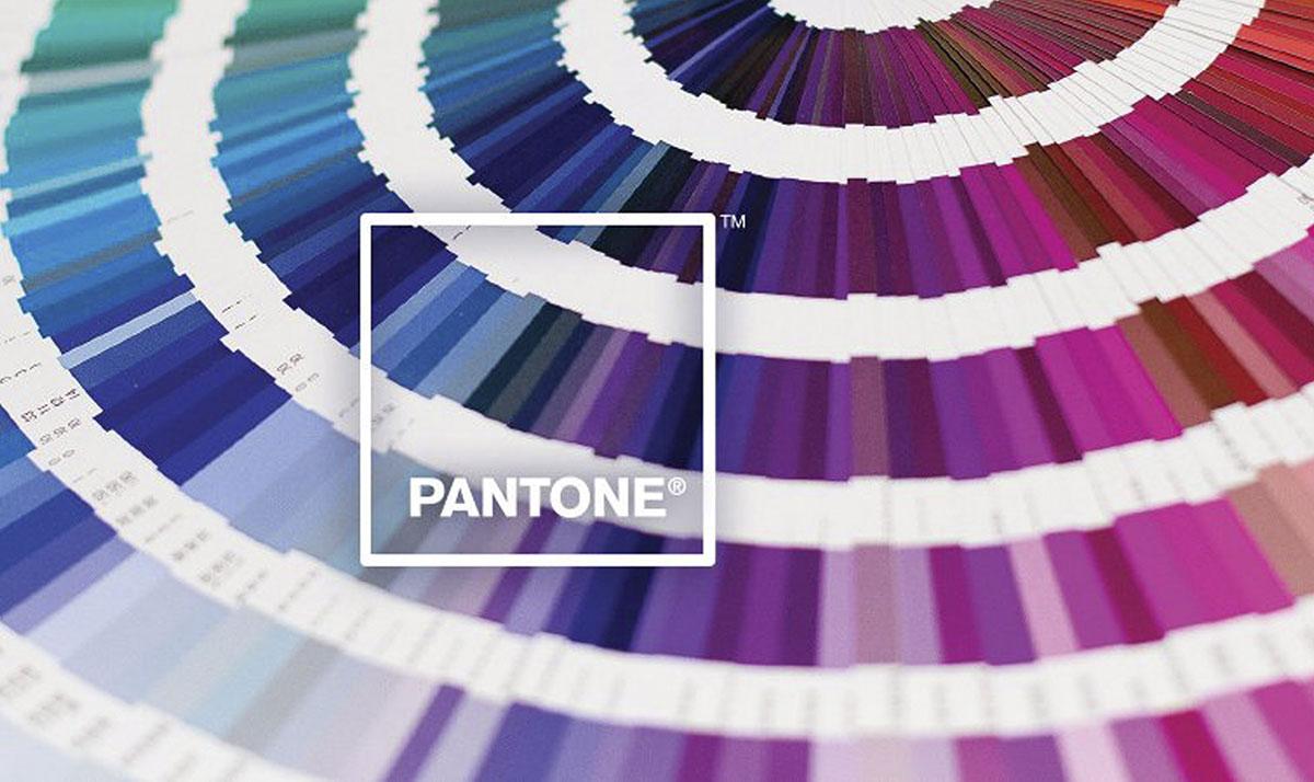 Pantone_coy