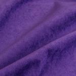 Fernando ultra violet