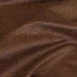 Puma brown