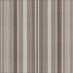 Sunray cocoa stripe
