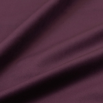 Kolibri violet