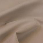 Kolibri camel
