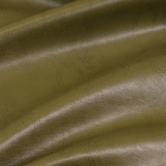 Pegas oliva