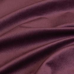 Hawaii violet