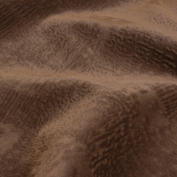 Mars cocoa
