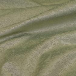 Puma oliva