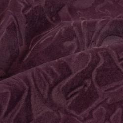 Focus violet
