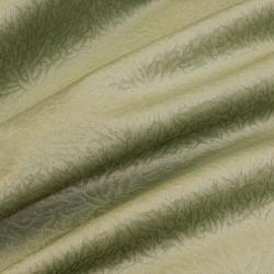Savanna oliva